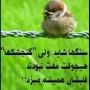 575889_379967652107198_326142440_n.jpg